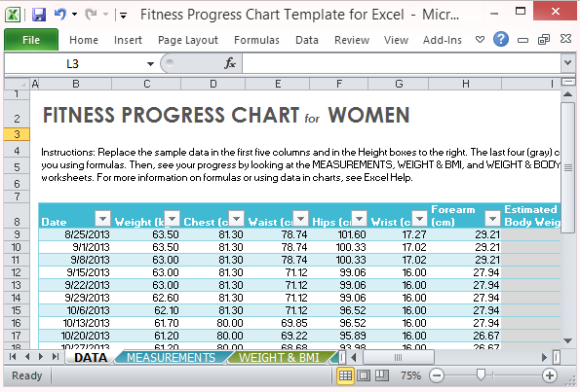 Fitness Progress Chart Template for Excel – Body Fat Percentage Chart Template