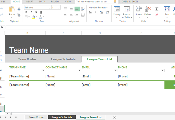 Sports roster and schedule template for excel for Sports team roster template