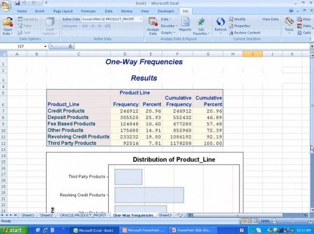SAS Business Analytics and Excel