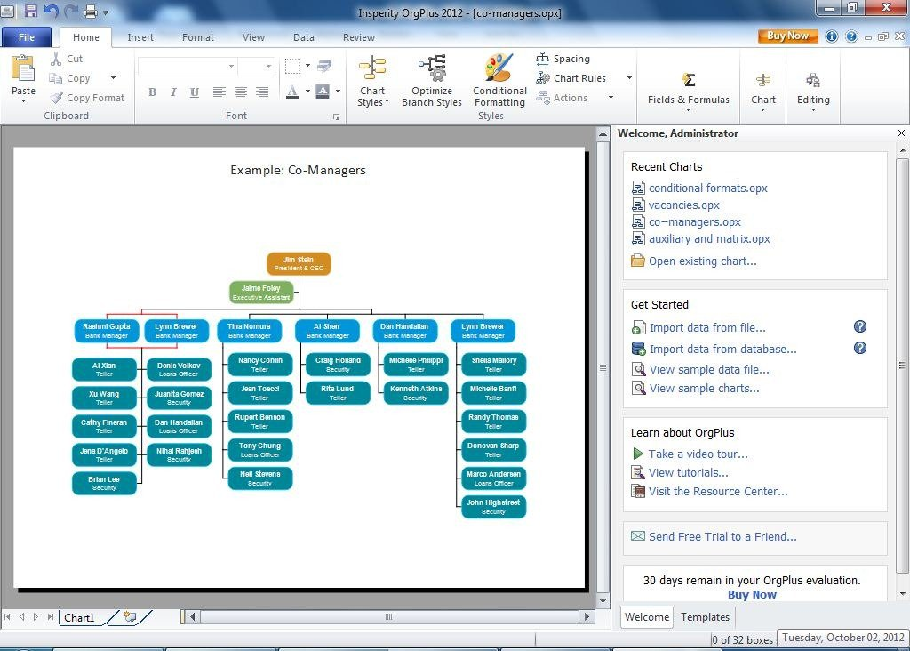 co managers - Organizational Flow Chart Template Free