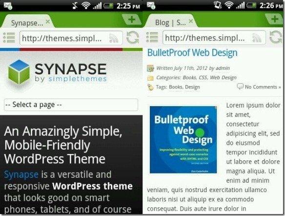 Synapse Responsive Theme