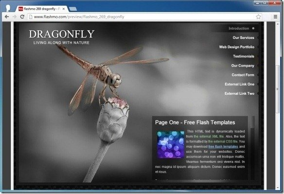 flashmo 269 dragonfly Free Flash Template