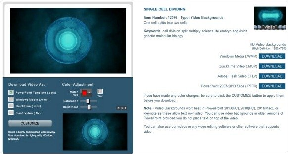 Animated Biology Powerpoint Template With Cell Division Animation