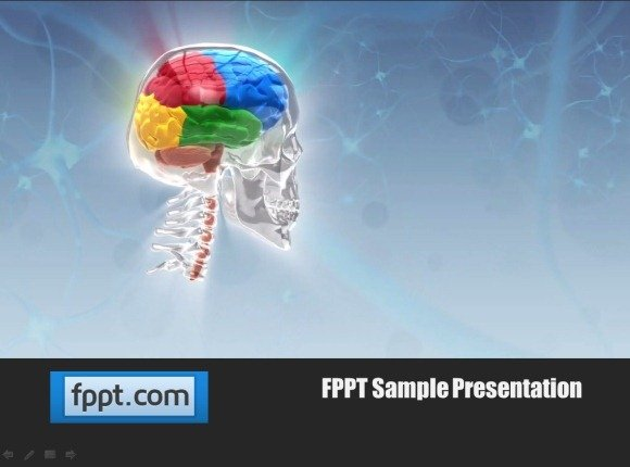 Animated skull template for powerpoint presentations human brain powerpoint template toneelgroepblik Images