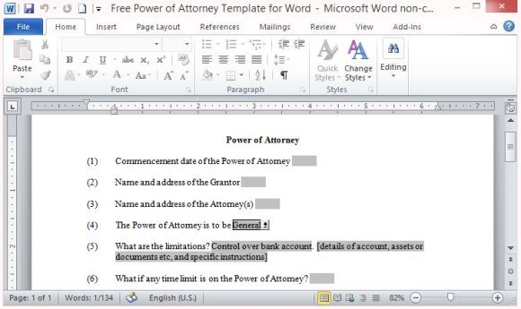 Professionally Written Power of Attorney Word Template