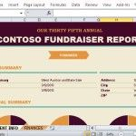 Create a Beautiful and Interesting Fundraising Report