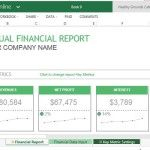 Professionally Designed Template for Financial Reports