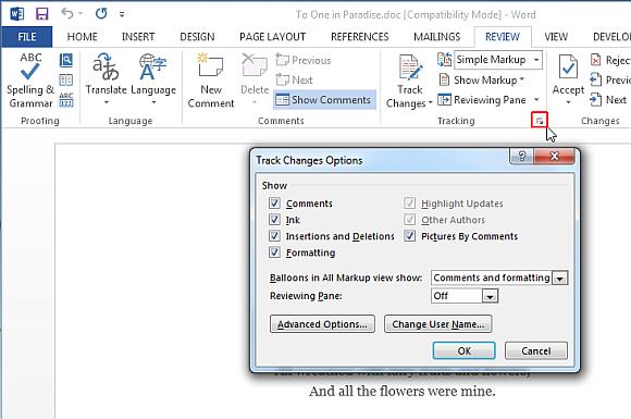 Customize track changes in Word 2013
