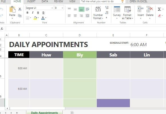 Daily Appointment Calendar Template For Excel - Excel online templates
