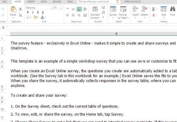 Survey Form Template For Excel