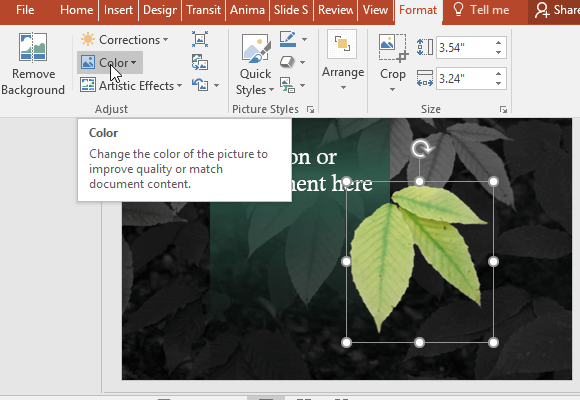 Change-the-color-or-format-the-image-to-customize-it