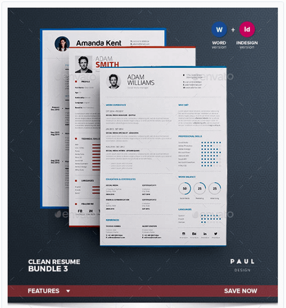 Top 11 Professional Resume Templates For Making The Perfect ...