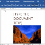 eye-catching-cover-report-template-for-word