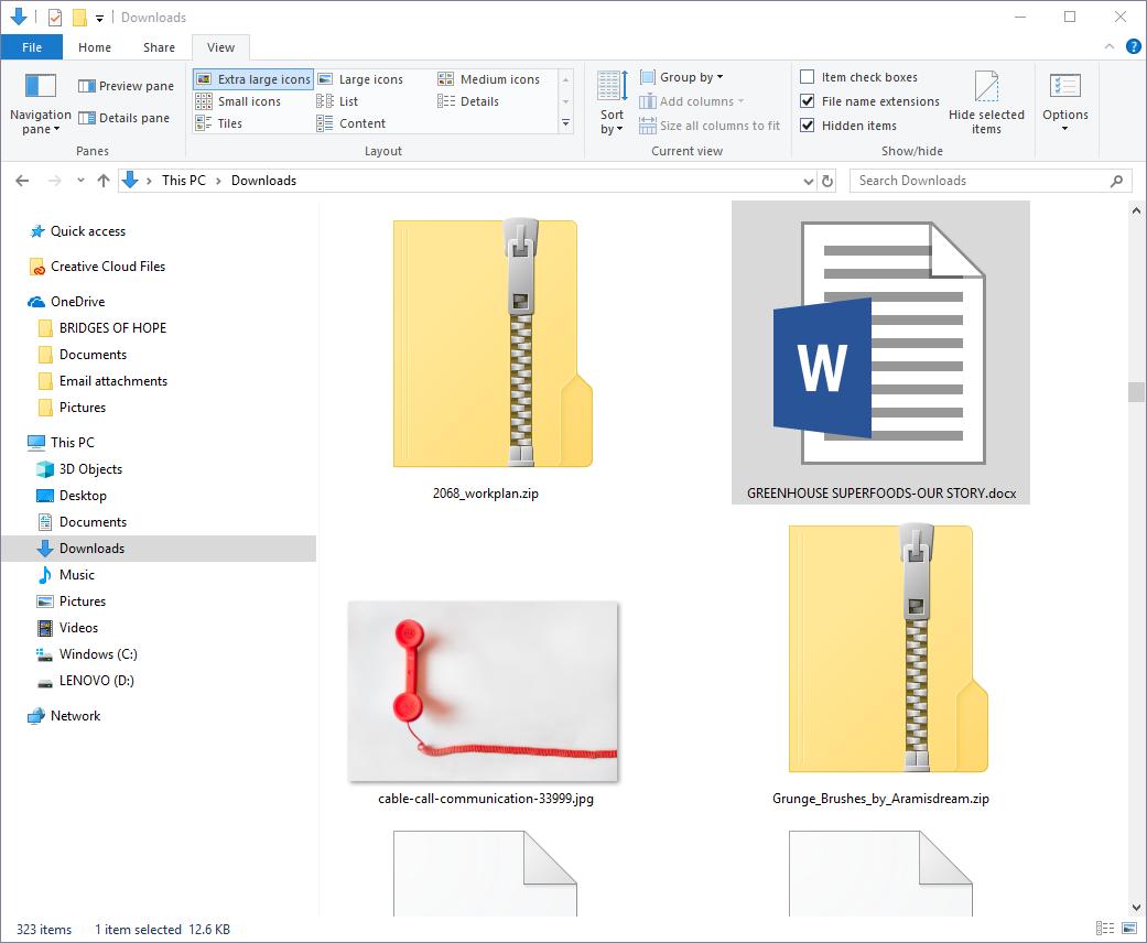Check File In Windows Explorer