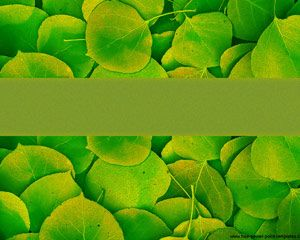 Green Nature Powerpoint PPT Template