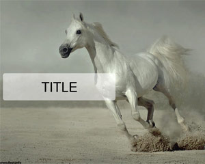 free horses powerpoint template free powerpoint templates