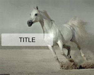 White horse running Powerpoint Template