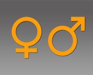 Gender Powerpoint Template