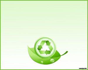 Ecología PPT