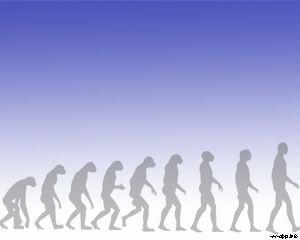 evolución del hombre PPT
