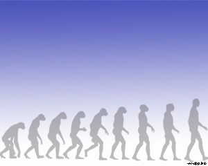 Evolución Humana PPT PPT Template