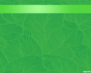 Selva Plantilla PowerPoint PPT Template