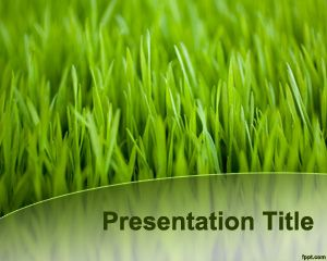 Green Grass Template for PowerPoint PPT Template