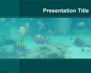 Plantilla PowerPoint de Acuario PPT Template