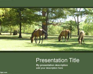 Plantilla PowerPoint de Caballos