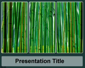 Sugar Cane PowerPoint Template PPT Template