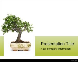 Bonsai PowerPoint Template