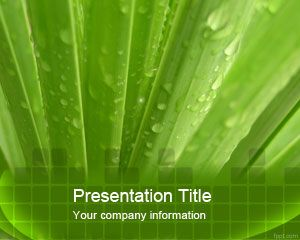 Aloe Vera PowerPoint Template