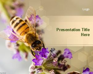 Animals free powerpoint templates alternatively you can download more honey bee templates for powerpoint and backgrounds with bees and other bee ppt templates toneelgroepblik Images