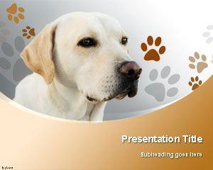 Labrador Retriever Dog PowerPoint Template