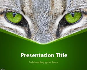 Animals free powerpoint templates you can download free cats ppt template to prepare awesome presentations with cats and cat eyes this free cat powerpoint template and slide design is toneelgroepblik Choice Image
