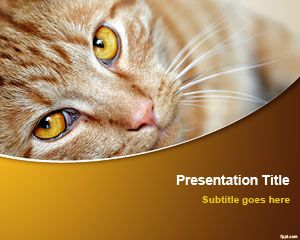 Cat PowerPoint Template