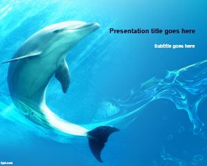 Animals free powerpoint templates you can download free dolphin powerpoint template with blue background design dancing on the sea to make impressive presentations to an audience interested toneelgroepblik Gallery