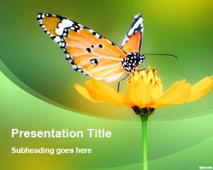 Flower Butterfly PowerPoint Template
