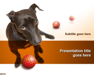 Adopt a Dog PowerPoint Template