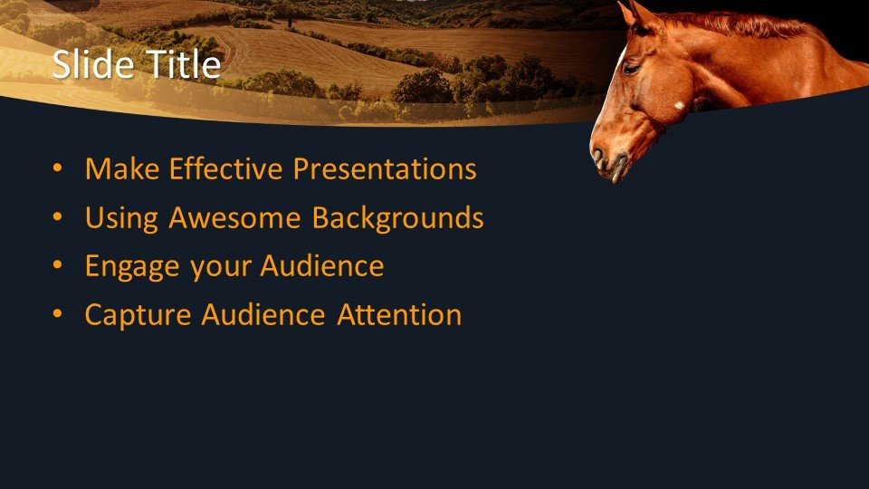 free animal equine powerpoint template free powerpoint
