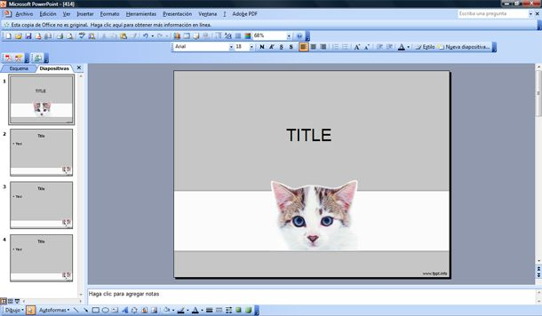 free pet cat powerpoint template